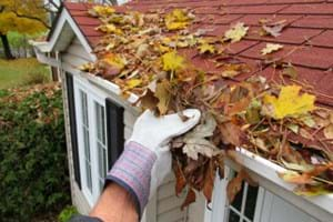 Cleaning leaves out of gutters